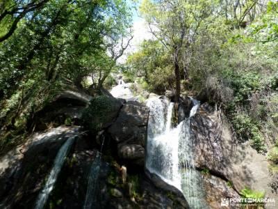 Cerezos flor_Valle del Jerte;